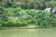 In-Thailand-167
