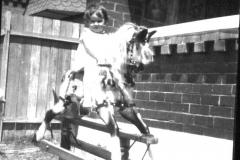 reg-on-rockinghorse