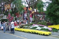 In-Thailand-190